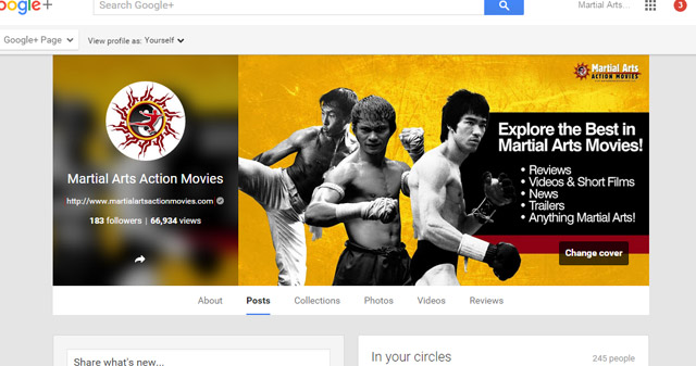 Martial Arts Action Movies on Google